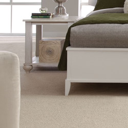 Galaxy Discount Carpet Store Provides Connecticut S Largest Selection Of Carpet Hardwood Laminate Vinyl Remnant And Area Rugs We Are Located